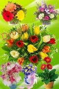 Клипарт - Букеты цветов часть 2