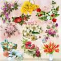 Подборка клипарта на прозрачном фоне – Цветочные композиции, букеты цветов