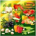 Изобилие овощей для вегетарианцев - Клипарт