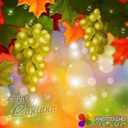 PSD исходник - Зреет, спеет виноград, солнечным лучам так рад