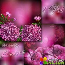 Многослойные фоны - Пурпурные цветы величием чаруют небеса