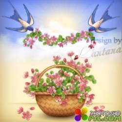 Букет цветов в корзине