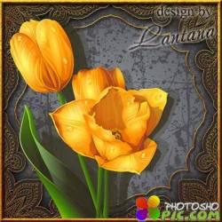 PSD исходник - Винтажные тюльпаны в рамке