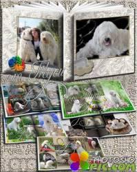 Photo Album for pets - My Lyubimets