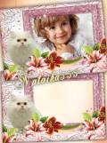 Рамка с животным - Белый маленький котёнок