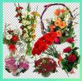 Клипарт - Букеты цветов