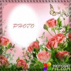 Рамка для фотографии - Весенние розы для тебя