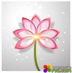 Цветок лотоса в векторе | Lotus Flower Abstract