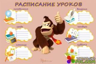 Расписание для уроков - Символ года, огненная обезьяна. Только на